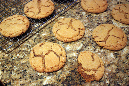 ginger-snap-cookie-2