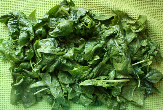 Spring-green-spinach