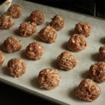 Turkey Meatballs for Now and Later