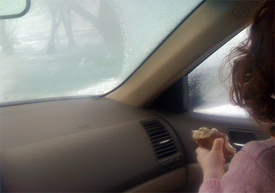 winter-car-picnic