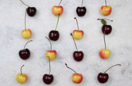 Cherry-Feature