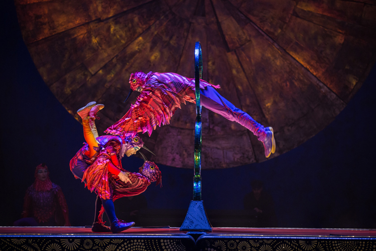 Cirque-Hops-Luzia-Ticket-deal
